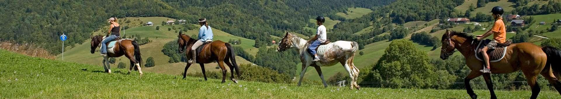 equitation-938
