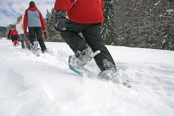 Snowshoe excursions