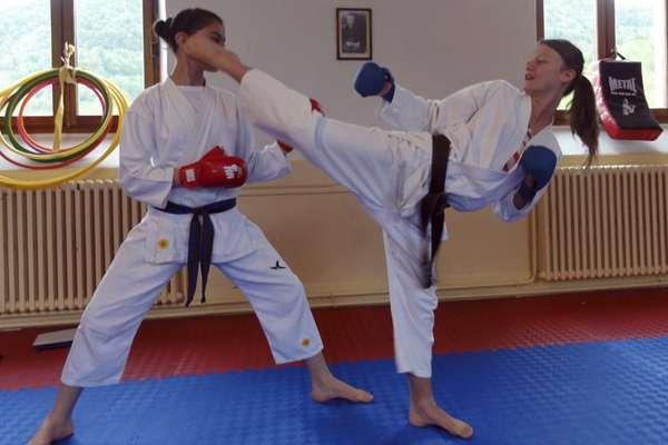 Karate Club