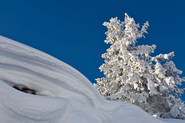 Exceptional snow