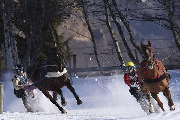 Ski Jöering