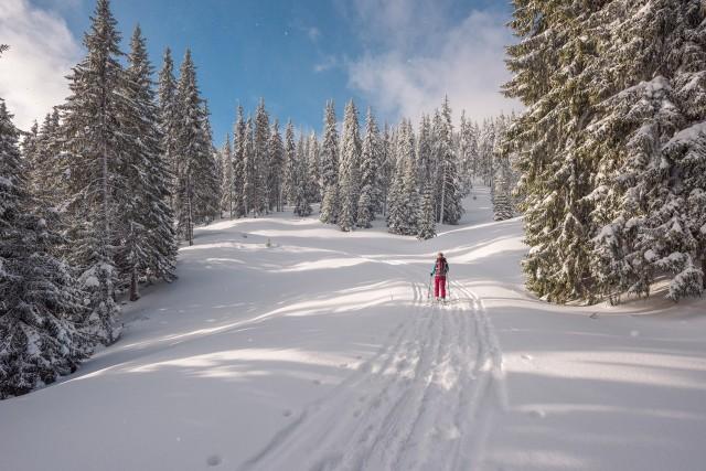 Rendez-vous Expériences Ski de rando