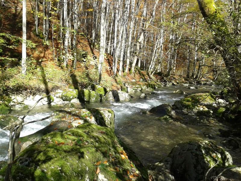 peche-dans-la-riviere-du-cheran-1087-1648