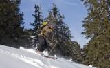 Ski poudreuse !