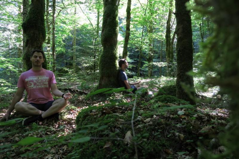 Marche arbres Bellevaux